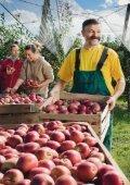 Mit R+V sicher zum Ziel Der Weg des Apfels zum Verbraucher - Seite 6