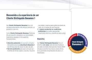 Banamex 1 - Banamex.com