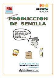 Producción de Semillas – Salta