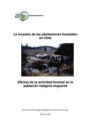 La invasión de las plantaciones forestales en Chile Efectos ... - Olca