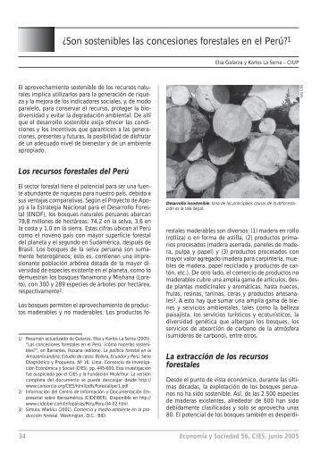 ¿Son sostenibles las concesiones forestales en el Perú?1