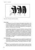 Cartilla: La Vasectomía - Inppares - Page 4