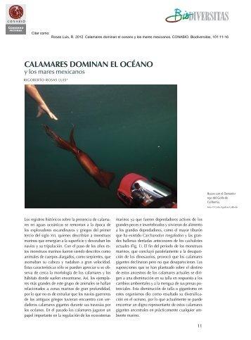 View PDF - calocean - Consejo Superior de Investigaciones ...