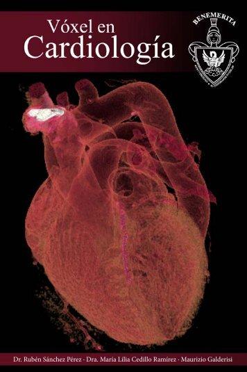 Vóxel en Cardiología - Bibliotecas BUAP - Benemérita Universidad ...