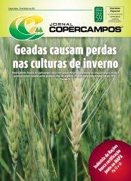 Geadas causam perdas nas culturas de inverno - Copercampos