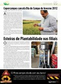 Geadas causam perdas nas culturas de inverno - Copercampos - Page 5