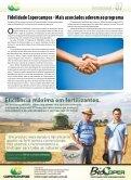 Geadas causam perdas nas culturas de inverno - Copercampos - Page 7