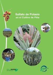 Sulfato de Potasio - Tessenderlo Group