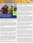 Pueblos Indígenas, Bosques y Ambientes Marinos de Panamá - Page 6