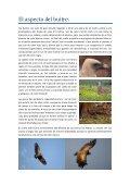 Buitre leonado.pdf - Jorge Rubio - Page 3