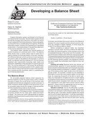 Developing a Balance Sheet - Oklahoma Cooperative Extension ...
