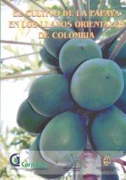 Manejo del cultivo de la papaya en los llanos orientales - Agronet