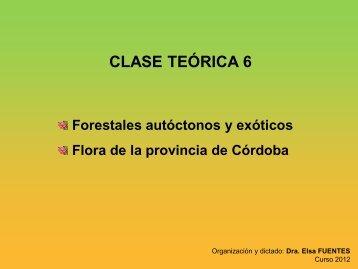 Teórico 6