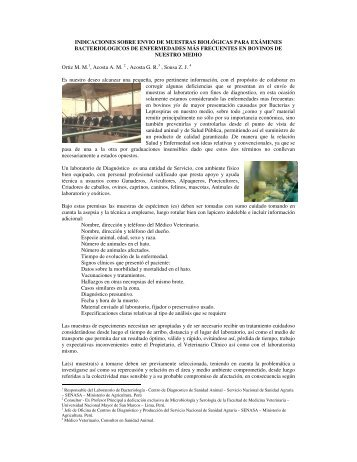indicaciones sobre envio de muestras biológicas para ... - Senasa