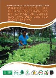 Produccion de hortalizas.pdf - programa ECOCLIMA