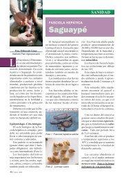 Saguaypé. Fasciola Hepática - Instituto Plan Agropecuario