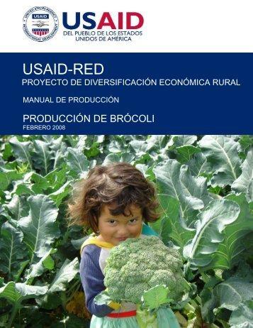 producción de brócoli - Fintrac Inc.