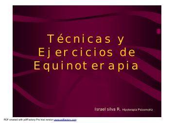Técnicas y Ejercicios de Equinoterapia