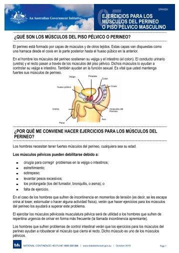 05ejercicios para los músculos del perineo o piso pélvico masculino