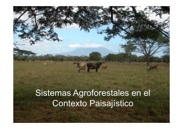 Sistemas Agroforestales en el Contexto Paisajístico. Fabrice Declerck