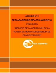"""adenda n° 2 declaración de impacto ambiental proyecto """"reinicio de ..."""