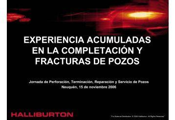 descargar (3.50 mb) - Instituto Argentino del Petroleo y del Gas