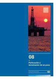 Capitulo 8 - Cámara Argentina del Gas Natural Comprimido