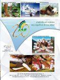Aviso publicitario JAB Representaciones - Acicam - Page 2