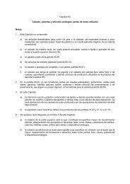 Capítulo 64 Calzado, polainas y artículos análogos; partes ... - Aladi