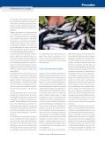 Pescados - Mercasa - Page 4