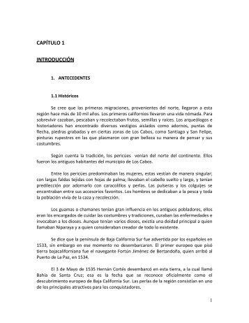 CAPÍTULO 1 INTRODUCCIÓN - UNAM