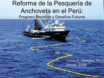 La Anchoveta Peruana: Progreso Reciente y ... - Instituto del Perú