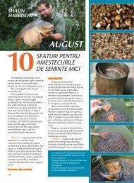 10 Sfaturi pentru amestecurile de seminte mici - Quest Baits