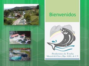 PRODUCTORES DE TRUCHA MINERAL DEL CHICO.pdf - Sagarpa