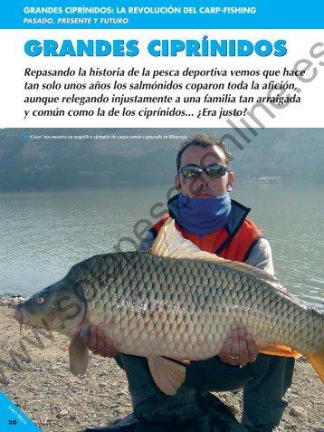 El carp-fishing - Solopescaonline.es