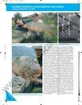El carp-fishing - Solopescaonline.es - Page 7