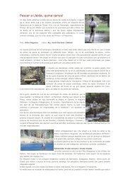 Pesca a Lleida - Ara Lleida