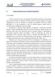 N. CARACTERIZAÇÃO DA ATIVIDADE PESQUEIRA a ... - Ibama