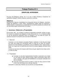 TP 04 Nitrogeno.pdf