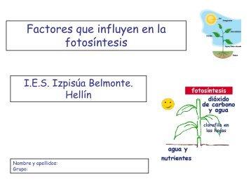 Factores que influyen en la fotosíntesis - IES Izpisúa Belmonte
