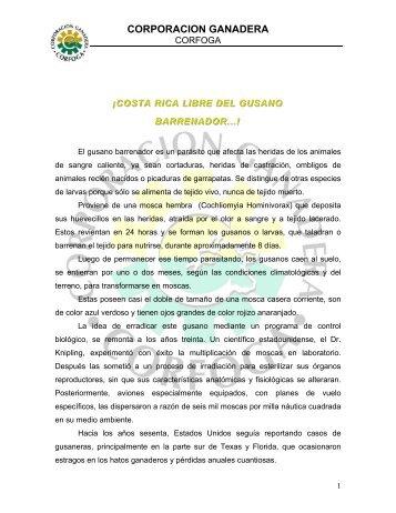 CORPORACION GANADERA - CORFOGA