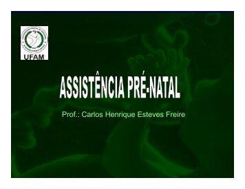 Assistencia Pre-Natal