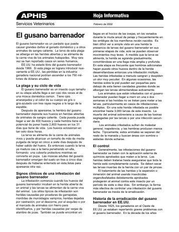 El gusano barrenador - Oficina Regional de la FAO para América ...