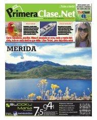 MÉRIDA MÉRIDA - Orbis Estudios
