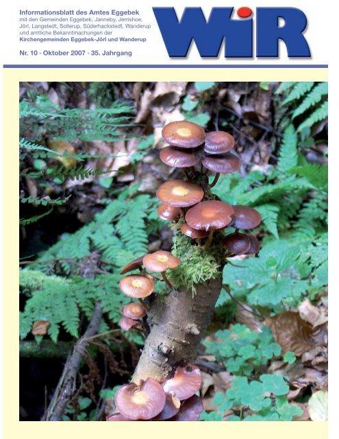 Nr. 10 · Oktober 2007 · 35. Jahrgang ... - Amt Eggebek