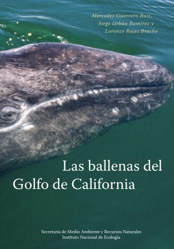 Las ballenas del Golfo de California - Instituto Nacional de Ecología