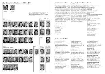 Der Rat der Stadt Salzgitter von 2011 bis 2016