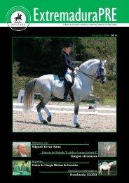 Nº 04 Diciembre 2009 - AECCPRE