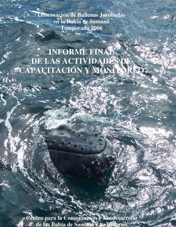 Informe Final Ballenas 2006.pdf - samana.org.do
