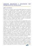 Guía de campo para la observación de ballenas jorobadas - Page 6